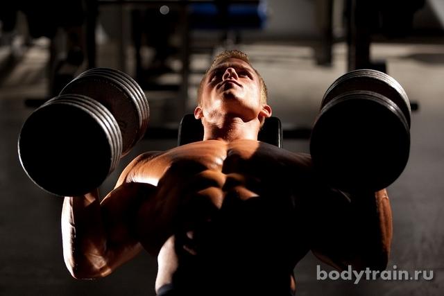 Бодибилдинг программы тренировок