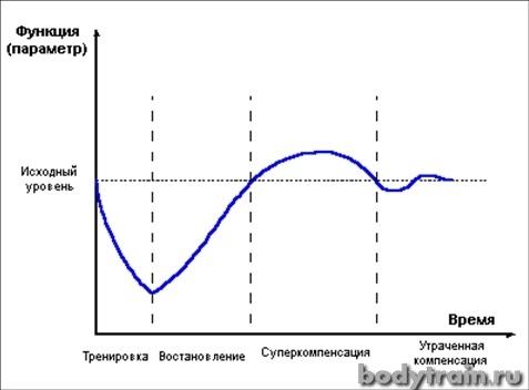 График фазы суперкомпенсации