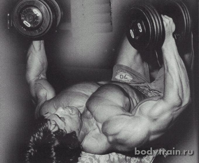 Эффективные упражнения для груди