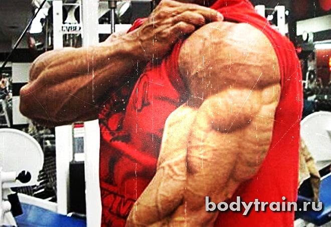 razvytyi-triceps