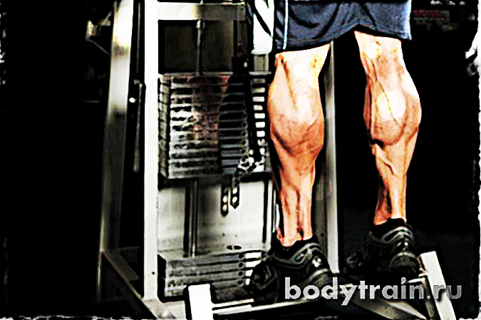 Базовые упражнения для ног