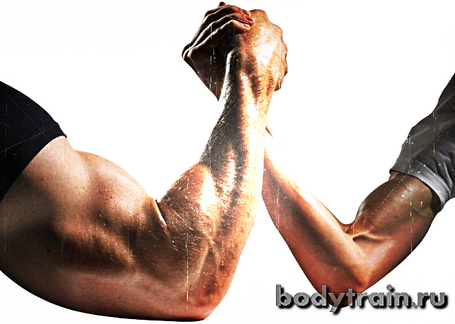 Тренировка рук на массу