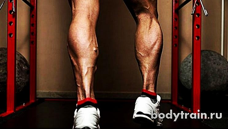 Как быстро накачать икры ног