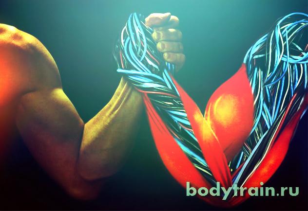 Гликоген в мышцах