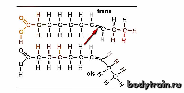 Трансконфигурация молекулы жира