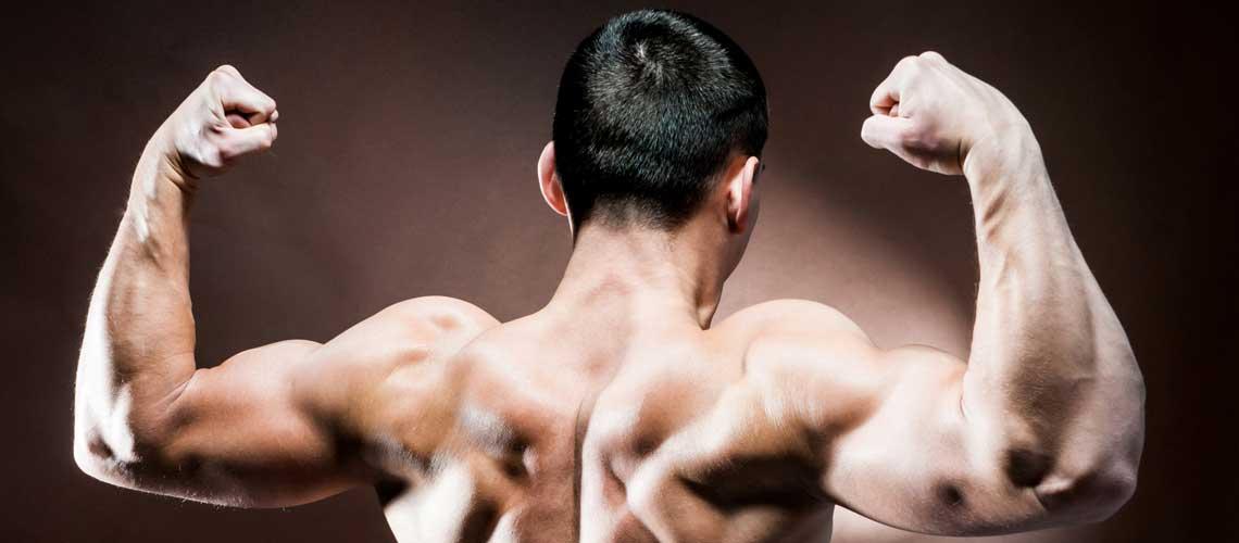 Набрать мышцы в домашних условиях 562