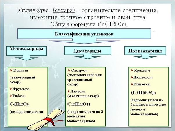 v-kakix-produktax-soderzhatsya-uglevody