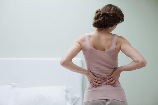 Bolit spina