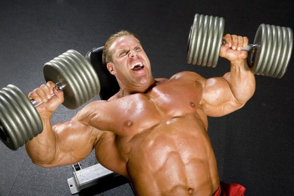 Rabotosposobnost' chrezvychajno znachima dlja ljudej zanimajushhihsja sportom