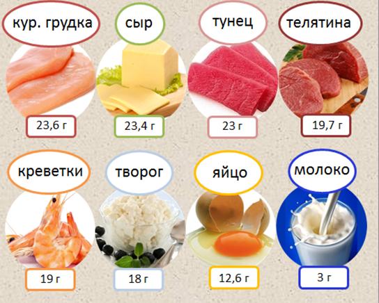 продукты содержащие белки список продуктов для похудения