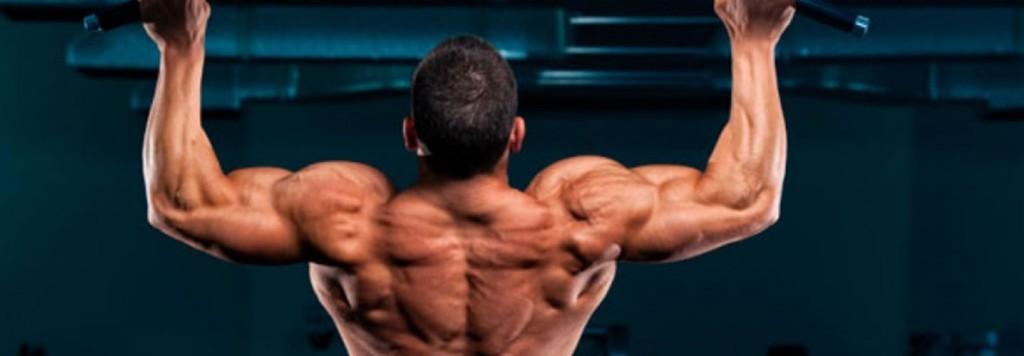 Тренировка спины на ширину