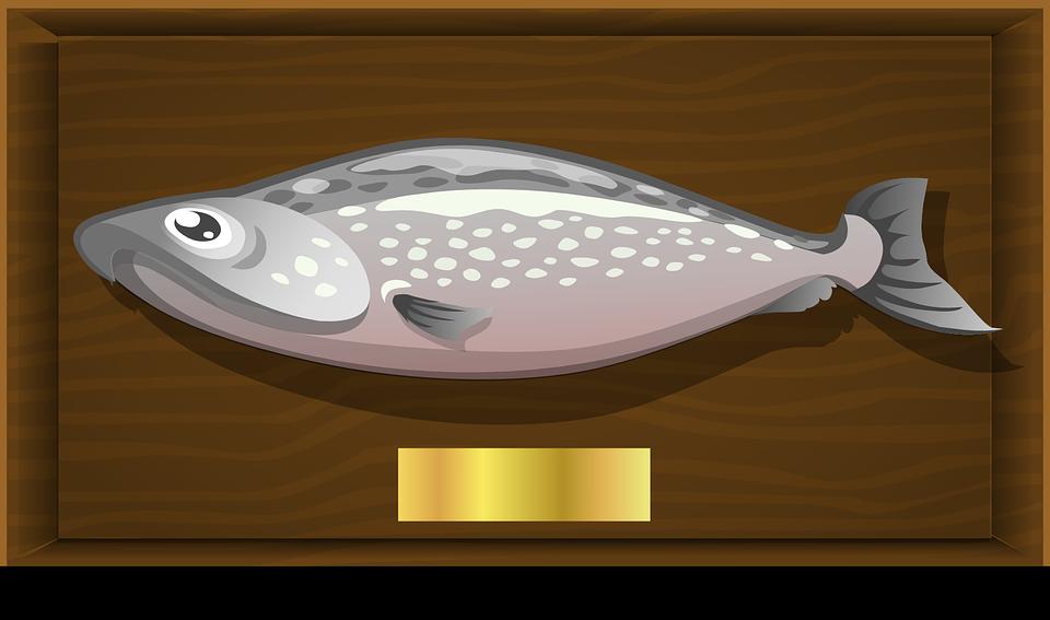 ryba-zhirnyx-sortov