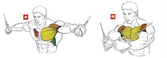 Сведение рук в кроссовере