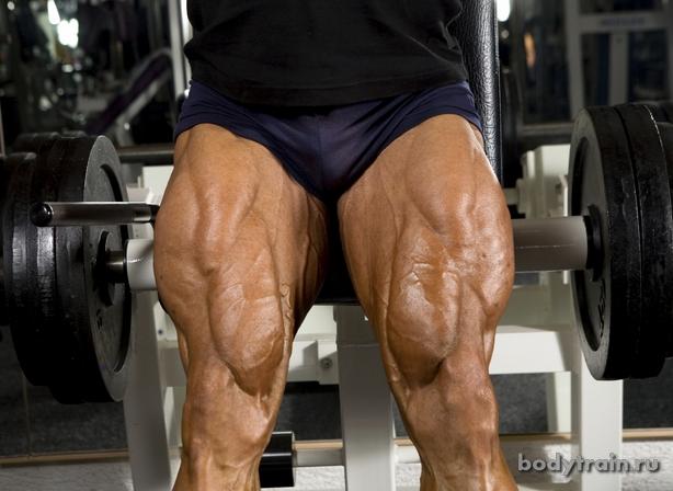 Приседания мышцы