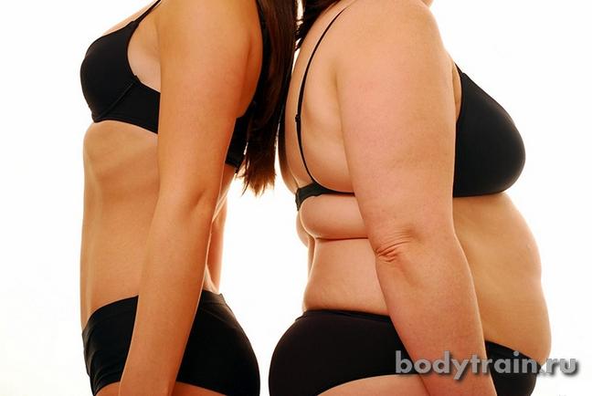 Принцип жиросжигания