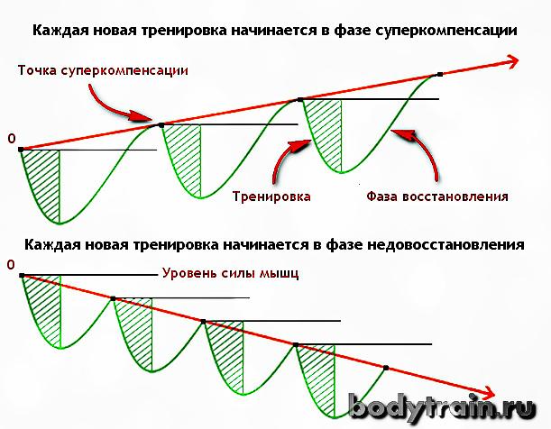 График перетренированности