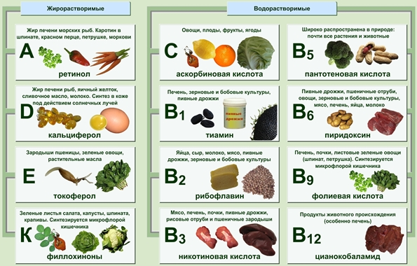 vitaminy i mineralnye soli