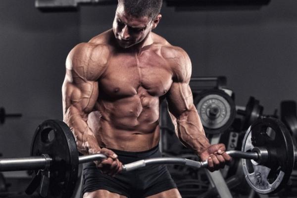 Prokachka bicepsa v trenazhernom zale