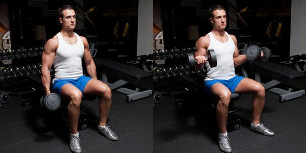 podem-gantelej-na-biceps