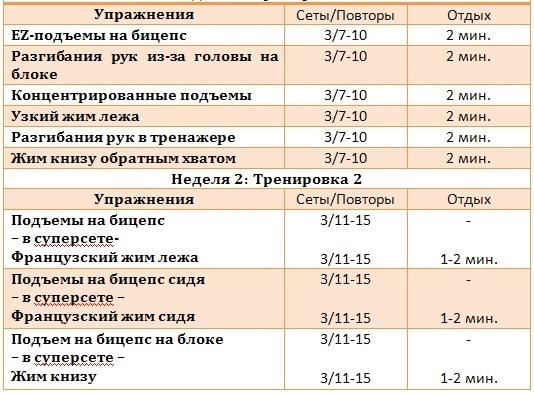 programma-trenirovki-dlya-ruk